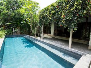 Villa Nyoman Bisma in center of ubud