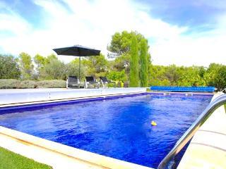 Magnifique Mas,piscine,jardin,à 3 min du Golf, Tourrettes