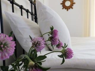 Cosy flat w private garden - Antibes Juan les Pins, Juan-les-Pins