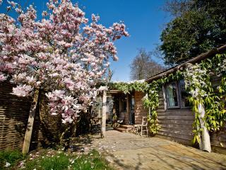 Home Orchard Cabin, Bath