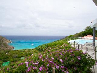 Private hillside villa overlooking Gouverneur Beach & the ocean WV BRE