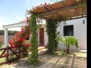 House in El Palmar, Cádiz 1024, Vejer de la Frontera