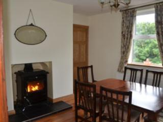 Living/dinging room with feature solid fuel stove