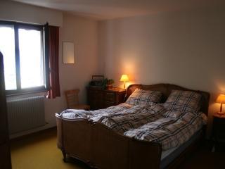 appartement luxueux sur le piste, Torgon