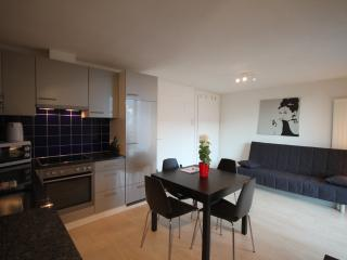 ZH Mango - Letzigrund HITrental Apartment, Prichovice