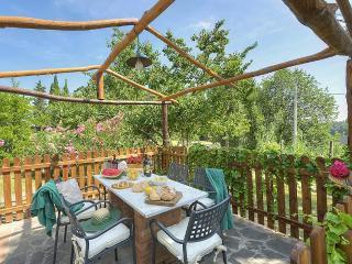 1 bedroom Villa in Montelopio, Tuscany, Italy : ref 5228872