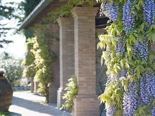 3 bedroom Villa in Montelopio, Tuscany, Italy : ref 5228878