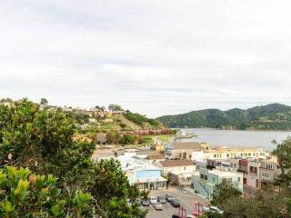 Modern Downtown Tiburon Oceanview Home