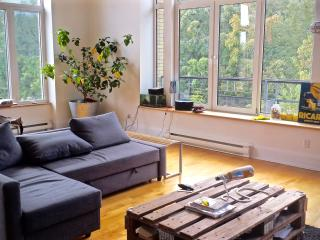 Amazing loft in front of Parc Laurier, Montreal