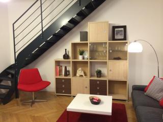 Grand appartement rénové avec terrasse, Lione