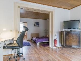 ID 5863   2 room apartment   WiFi   Laatzen