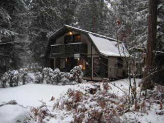 81SL Rustic Mt. Baker Cabin with a Hot Tub and WiFi, Glacier