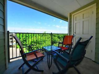 Stunning Comal Water Front Condo with River View!