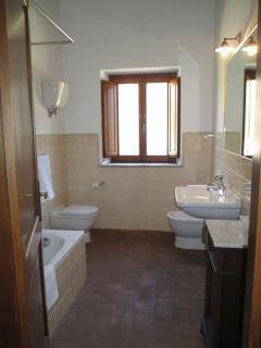 Bathroom 1: bathtub, shower, bidet