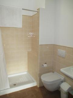 Bathroom 2: large shower stall, toilet, sink, skylight