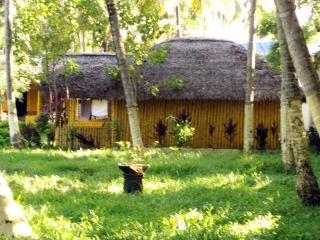Kerala Music Dance Soirée and Varkala Bamboo
