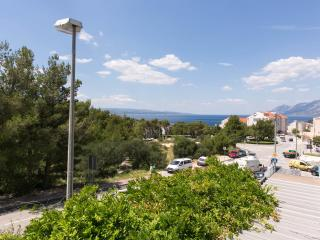 Nice Apt For 4-5 With Big Balcony Baska Voda!!