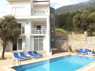 Fethiye Ovacık 5 + 1 özel havuzlu ve bahçeli Villa 1543