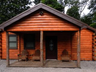 Cayuga Lake Cabin, Cayuga Wine Trail, Finger Lakes