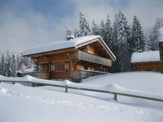 Luxurious Chalet, Les Carroz-d'Araches