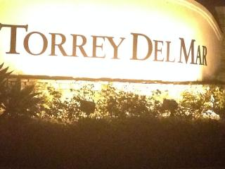 TORREY DEL MAR LUXURY HOME