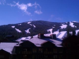 Great Slopeviews,Corner unit. Great rates. Great Summer Rates., Copper Mountain