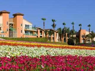 Grand Pacific Resorts  - Price Reduced!, Carlsbad