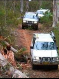 explore the Barrington Tops National Park