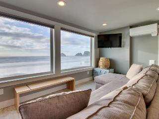 Amazing oceanfront & dog-friendly condo w/ jetted tub & close beach access!, Oceanside