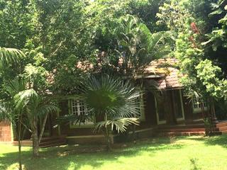 Kerala pleasing alluring 3 Wayanad two bed villa, Kalpetta