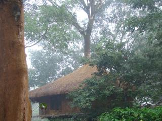 Kerala pleasing alluring 2 Wayanad 1 bed cottage, Kalpetta