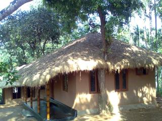 Kerala pleasing alluring 3 Wayanad 1 bed cottage, Kalpetta