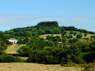 Orchard Barn at Woodhayes Farm, Honiton