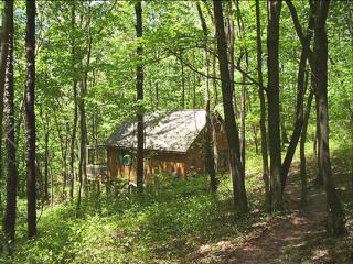Pointe of Nature-Greenbriar Cabin, Laurelville