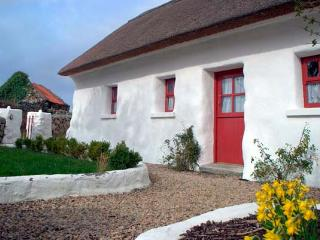 SPIDDAL THATCH COTTAGE, pet-friendly, multi-fuel stove, traditional cottage with