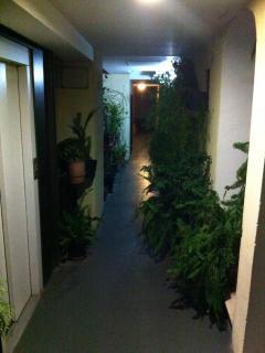 Outside corridor toward the house-door, very well illuminated at evening-night