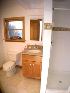 bathroom with toilet, sink, tiled shower