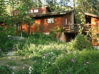 Spacious Mountain Retreat near Yosemite, Mariposa