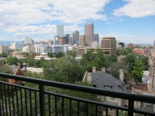 Fabulous Furnished Apt in the Heart of Denver