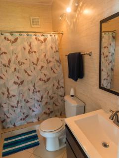 Apt 1 full bathroom
