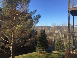 Large one Bedroom condo, Ski In sleeps 6, Mont Tremblant