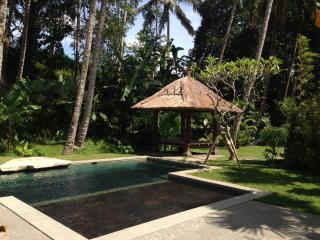 Ubud Compound house with bunk beds and ricefields, Petulu
