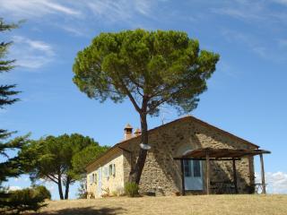 La Faina AGRITURISMO IL QUINTO: CHARME, RELAX, Magliano in Toscana