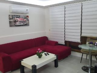 Ultra Lux 1+1 Apartment in Istanbul 1510