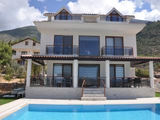 Divine 4 bedroom villa in Ovacik