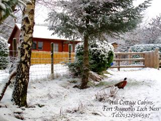 hill cottage cabins loch ness Scottish Highlands, Fort Augustus