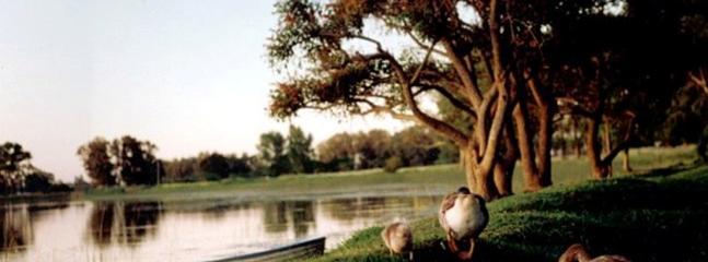 Parque Plaza Montero / laguna