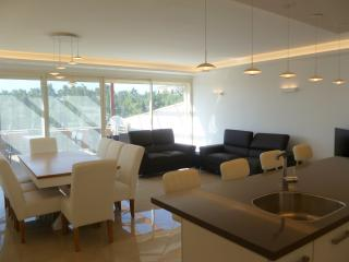 Luxurious Fashionable Wolfson Villa, Jerusalem