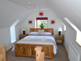 Contemporary one bedroom cabin with superfast WiFi