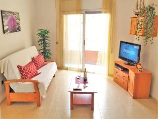 ANA VII BEACH-CITY-apartment, Lloret de Mar